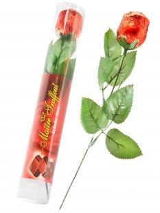 Schoko-Rose