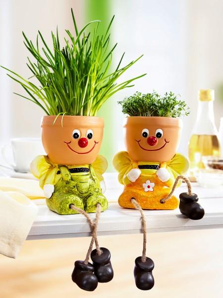 "Kräutertopf-Duo ""Biene"""